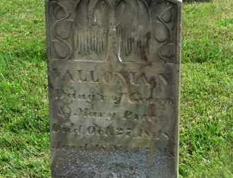 PRICE, VALLONIA N. - Marion County, Ohio | VALLONIA N. PRICE - Ohio Gravestone Photos