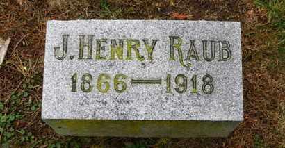 RAUB, J. HENRY - Marion County, Ohio   J. HENRY RAUB - Ohio Gravestone Photos