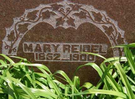REIDEL, MARY - Marion County, Ohio | MARY REIDEL - Ohio Gravestone Photos