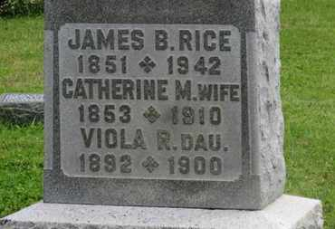 RICE, JAMES B. - Marion County, Ohio | JAMES B. RICE - Ohio Gravestone Photos