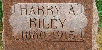 RILEY, HARRY A. - Marion County, Ohio | HARRY A. RILEY - Ohio Gravestone Photos