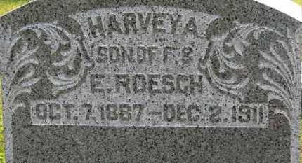 ROESCH, E. - Marion County, Ohio | E. ROESCH - Ohio Gravestone Photos