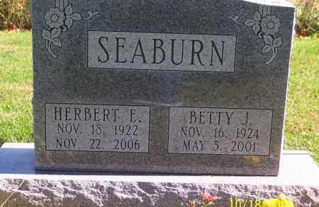 SEABURN, HERBERT E - Marion County, Ohio | HERBERT E SEABURN - Ohio Gravestone Photos