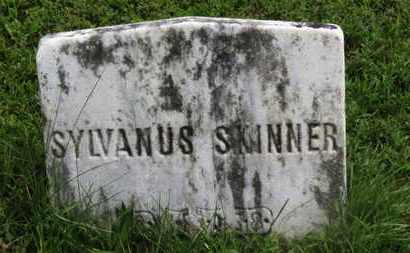 SKINNER, SYLVANUS - Marion County, Ohio | SYLVANUS SKINNER - Ohio Gravestone Photos