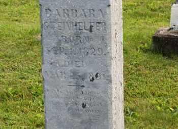 STEINHELFER, BARBARA - Marion County, Ohio   BARBARA STEINHELFER - Ohio Gravestone Photos