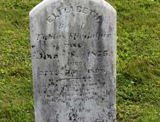 STINDULPER?(STINEHELFER), ELIZABETH - Marion County, Ohio | ELIZABETH STINDULPER?(STINEHELFER) - Ohio Gravestone Photos