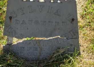 SWISHER, SYLVIA Z. - Marion County, Ohio | SYLVIA Z. SWISHER - Ohio Gravestone Photos