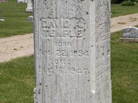 TEMPLE, DAVID A. - Marion County, Ohio | DAVID A. TEMPLE - Ohio Gravestone Photos