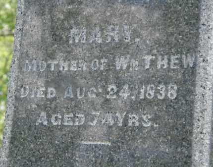 THEW, MARY - Marion County, Ohio | MARY THEW - Ohio Gravestone Photos
