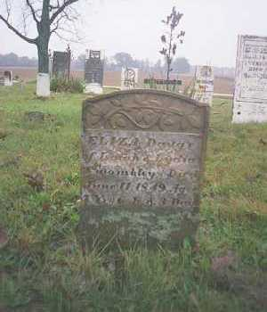 TWOMBLEY, ELIZA - Marion County, Ohio | ELIZA TWOMBLEY - Ohio Gravestone Photos