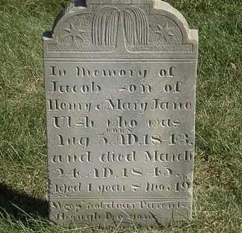ULSH, HENRY - Marion County, Ohio   HENRY ULSH - Ohio Gravestone Photos