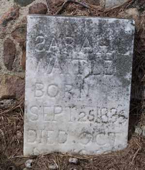 WAITLEY, SARAH L. - Marion County, Ohio   SARAH L. WAITLEY - Ohio Gravestone Photos