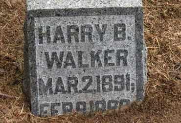 WALKER, HARRY B. - Marion County, Ohio   HARRY B. WALKER - Ohio Gravestone Photos