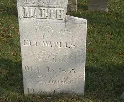 WAPLES, ELI - Marion County, Ohio | ELI WAPLES - Ohio Gravestone Photos