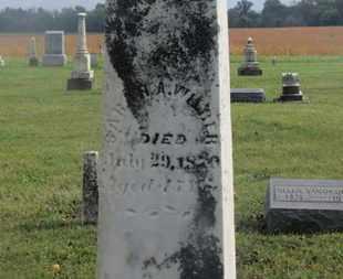WILBER, SARAH A. - Marion County, Ohio | SARAH A. WILBER - Ohio Gravestone Photos