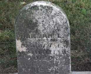 WILLIAMS, M. - Marion County, Ohio | M. WILLIAMS - Ohio Gravestone Photos