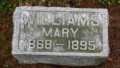 WILLIAMS, MARY - Marion County, Ohio   MARY WILLIAMS - Ohio Gravestone Photos