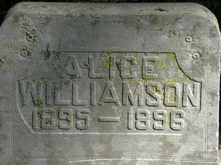 WILLIAMSON, ALICE - Marion County, Ohio | ALICE WILLIAMSON - Ohio Gravestone Photos