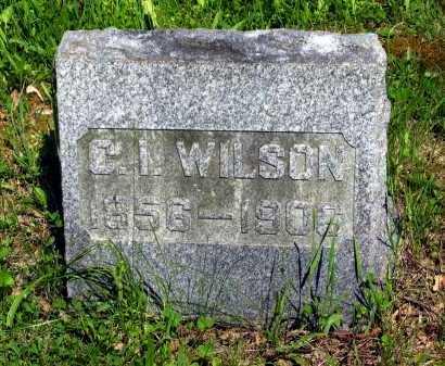 WILSON, C. I. - Marion County, Ohio | C. I. WILSON - Ohio Gravestone Photos