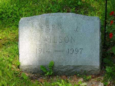 WILSON, FERN J. - Marion County, Ohio | FERN J. WILSON - Ohio Gravestone Photos