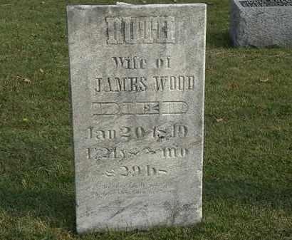 WOOD, JAMES - Marion County, Ohio | JAMES WOOD - Ohio Gravestone Photos