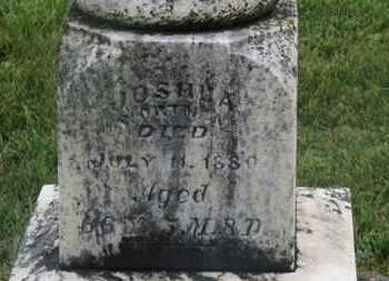WORTMAN, JOSHUA - Marion County, Ohio   JOSHUA WORTMAN - Ohio Gravestone Photos