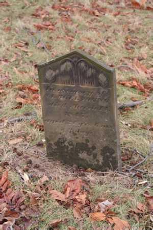 YOUNG, SAMUEL - Marion County, Ohio | SAMUEL YOUNG - Ohio Gravestone Photos