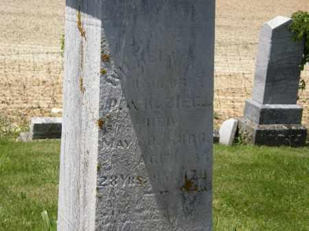 ZIEG, WILHELMINA - Marion County, Ohio | WILHELMINA ZIEG - Ohio Gravestone Photos