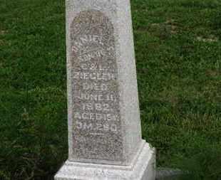 ZIEGLER, G. - Marion County, Ohio | G. ZIEGLER - Ohio Gravestone Photos