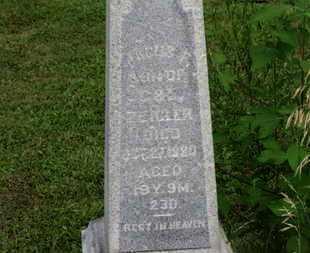 ZIEGLER, JACOB. F. - Marion County, Ohio | JACOB. F. ZIEGLER - Ohio Gravestone Photos