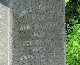 BLEIL, AMELIA C. - Medina County, Ohio | AMELIA C. BLEIL - Ohio Gravestone Photos
