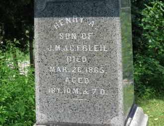 BLEIL, HENRY A. - Medina County, Ohio | HENRY A. BLEIL - Ohio Gravestone Photos