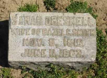 DRESKELL, SARAH - Medina County, Ohio | SARAH DRESKELL - Ohio Gravestone Photos
