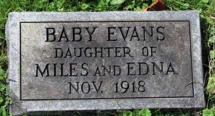 EVANS, EDNA - Medina County, Ohio | EDNA EVANS - Ohio Gravestone Photos