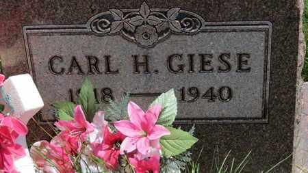 GIESE, CARL H. - Medina County, Ohio | CARL H. GIESE - Ohio Gravestone Photos