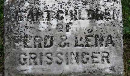 GRISSINGER, INFANT CHILDREN - Medina County, Ohio | INFANT CHILDREN GRISSINGER - Ohio Gravestone Photos