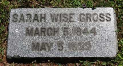 WISE GROSS, SARAH - Medina County, Ohio | SARAH WISE GROSS - Ohio Gravestone Photos