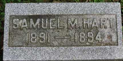 HART, SAMUEL M. - Medina County, Ohio | SAMUEL M. HART - Ohio Gravestone Photos