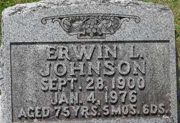 JOHNSON, ERWIN L. - Medina County, Ohio | ERWIN L. JOHNSON - Ohio Gravestone Photos