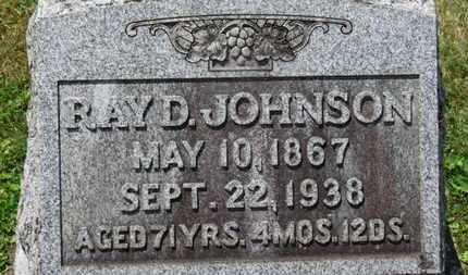 JOHNSON, RAY D. - Medina County, Ohio | RAY D. JOHNSON - Ohio Gravestone Photos