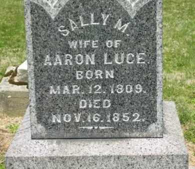 LUCE, SALLY M. - Medina County, Ohio   SALLY M. LUCE - Ohio Gravestone Photos