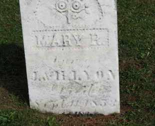 LYON, M - Medina County, Ohio | M LYON - Ohio Gravestone Photos
