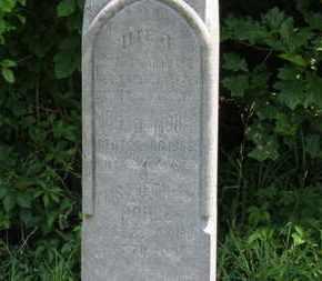 MOHLE, ELISABETH - Medina County, Ohio | ELISABETH MOHLE - Ohio Gravestone Photos