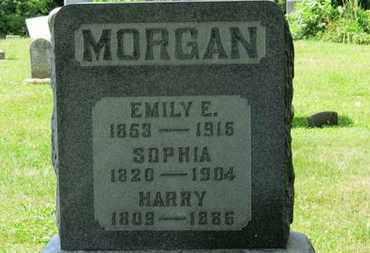 MORGAN, EMILY E. - Medina County, Ohio | EMILY E. MORGAN - Ohio Gravestone Photos