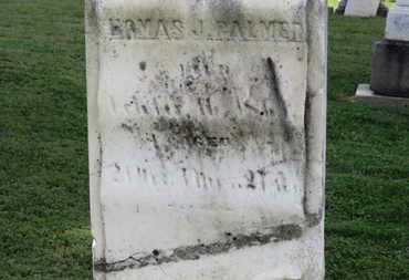 PALMER, THOMAS J. - Medina County, Ohio | THOMAS J. PALMER - Ohio Gravestone Photos