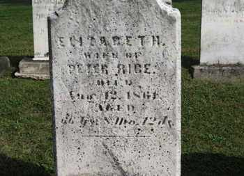 RICE, ELIZABETH - Medina County, Ohio | ELIZABETH RICE - Ohio Gravestone Photos
