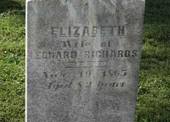 RICHARDS, LEONARD - Medina County, Ohio | LEONARD RICHARDS - Ohio Gravestone Photos
