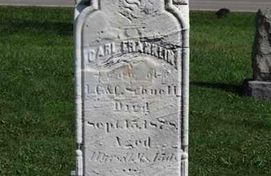 SCHNELL, CARL FRANKLIN - Medina County, Ohio   CARL FRANKLIN SCHNELL - Ohio Gravestone Photos