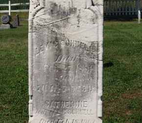 SCHNELL, CATHERINE - Medina County, Ohio   CATHERINE SCHNELL - Ohio Gravestone Photos
