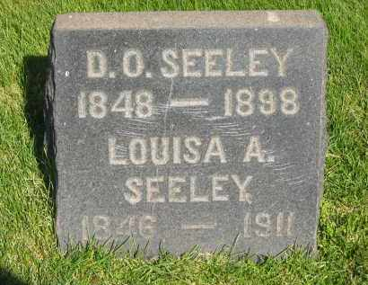 SEELEY, D. O. - Medina County, Ohio | D. O. SEELEY - Ohio Gravestone Photos